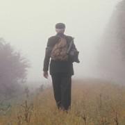 Nebelbild-Schluss-Waller-
